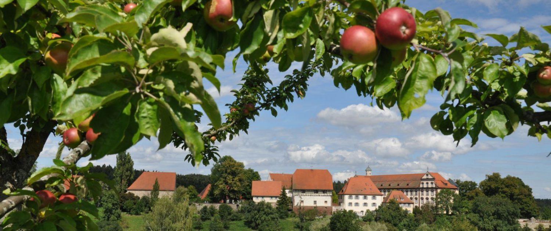 Kloster Kirchberg im Herbst (c) Kloster Kirchberg